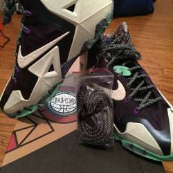 "Nike lebron xi 11 ""gumbo"""