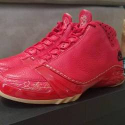 Air jordan xx3 chi city