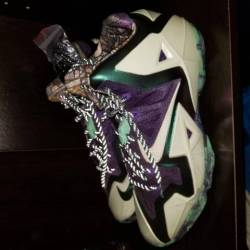 Lebron 11 all star gator kings