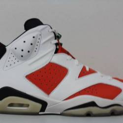 Men s nike air jordan 6 gatora...
