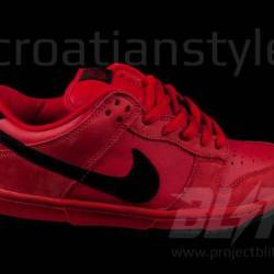 Nike dunk low pro sb true red ...