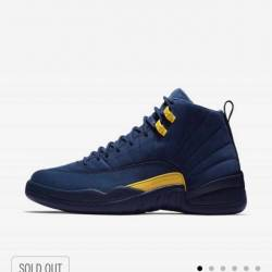 Jordan 12 michigan xii